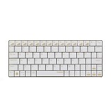 RAPOO Wireless Bluetooth Ultra-slim Keyboard for iPad [E6300] - Gold - Keyboard Basic